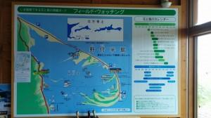 4_notsuke1